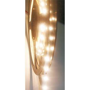 LAMP.552 FLEX